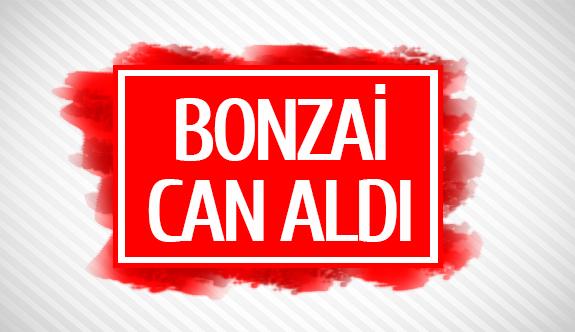 Bonzai can aldı