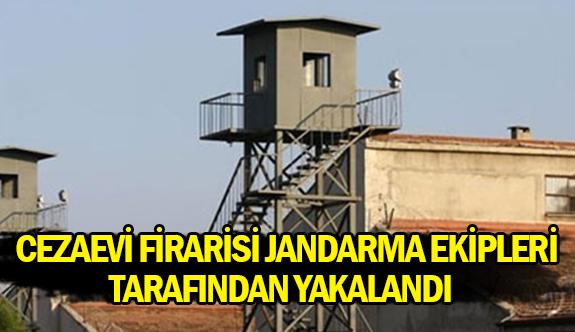 Cezaevi firarisi jandarma ekipleri tarafından yakalandı
