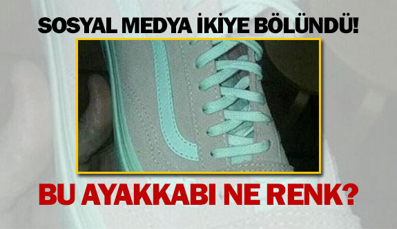 Sosyal medya ikiye bölündü! Bu ayakkabı ne renk?