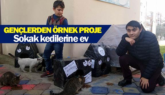 Gençlerden örnek proje! Sokak kedilerine ev!