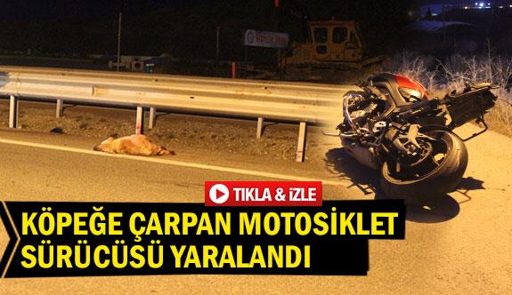 Köpeğe çarpan motosiklet sürücüsü yaralandı