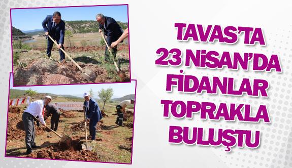 Tavas'ta 23 Nisan'da fidanlar toprakla buluştu