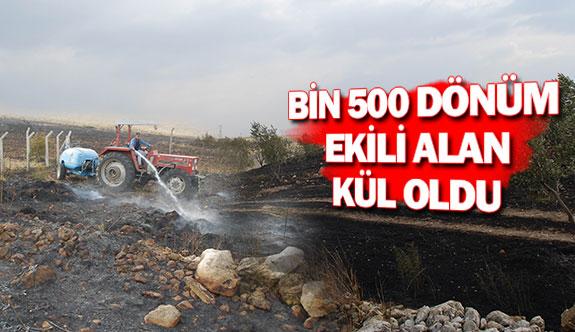 Bin 500 dönüm ekili alan kül oldu