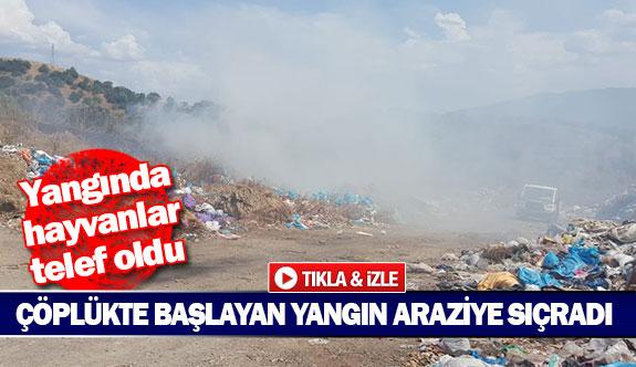 Çöplükte başlayan yangın araziye sıçradı
