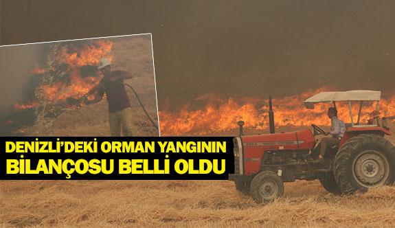 Denizli'deki orman yangının bilançosu belli oldu