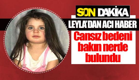 Leyla'dan acı haber geldi