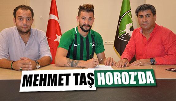 Mehmet Taş Horoz'da