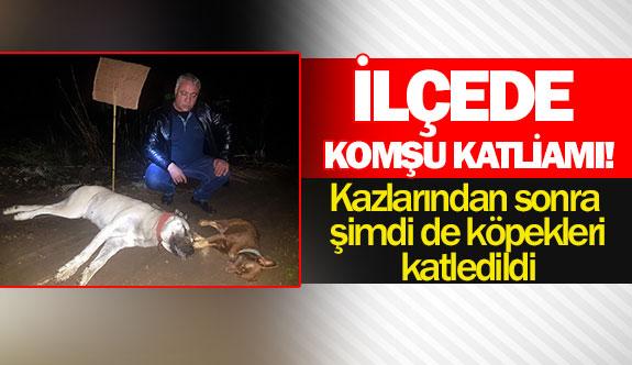 Kazlarından sonra şimdi de köpekleri katledildi