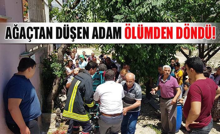 Ağaçtan düşen adam ölümden döndü!