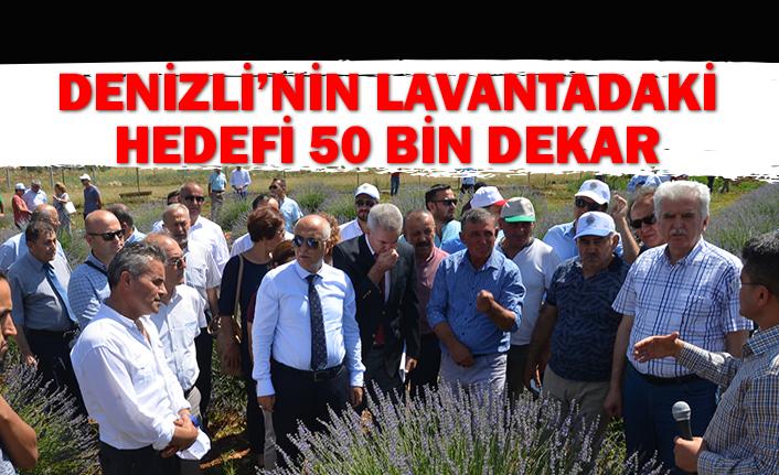 Denizli'nin Lavantadaki Hedefi 50 Bin Dekar