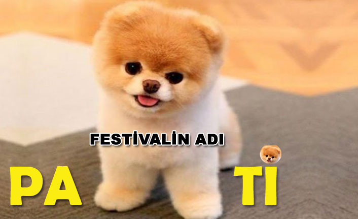 Pati Festivali başlıyor..!