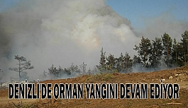 Denizli'de orman yangını devam ediyor