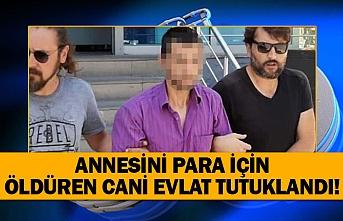 Annesini para için öldüren cani evlat tutuklandı!