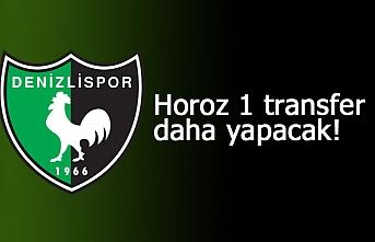 Horoz 1 transfer daha yapacak!