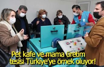Pet kafe ve mama üretim tesisi Türkiye'ye örnek oluyor