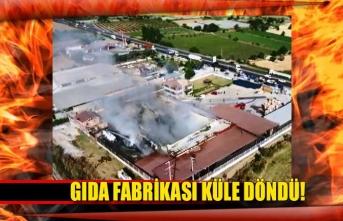 Gıda fabrikası küle döndü!