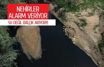 Nehirlerimiz tehdit altında!