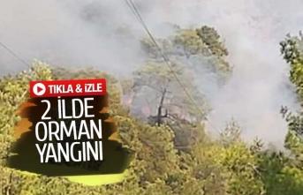2 ilde orman yangını çıktı