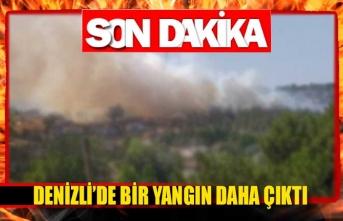 Denizli'de bir yangın daha çıktı