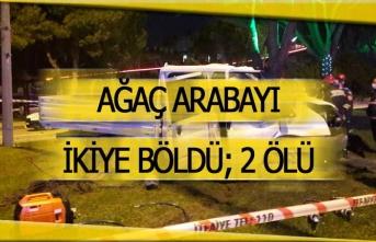 Ağaç arabayı ikiye böldü; 2 kişi hayatını kaybetti!