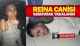 Reina canisi kıskıvrak yakalandı