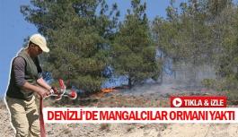 Denizli'de mangalcılar ormanı yaktı