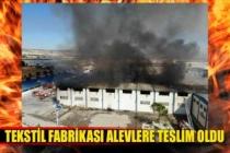 Dev fabrika alev alev yanıyor!