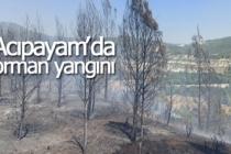 Acıpayam'da orman yangını!