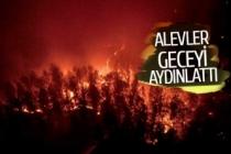 Muğla alev alev yanıyor! (GÖRÜNTÜLÜ)