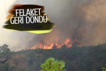 Denizli-Muğla sınırında orman yangını