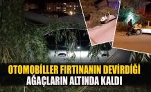 Otomobiller fırtınanın devirdiği ağaçların altında kaldı