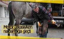 At sevgisi 35 yaşında nalbant yaptı