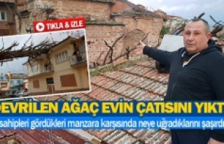 Devrilen ağaç evin çatısını yıktı!
