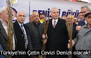 Türkiye'nin Çetin Cevizi Denizli olacak!