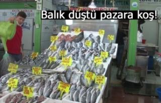 Balık düştü pazara koş!