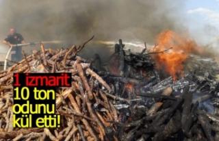 1 izmarit 10 ton odunu küle çevirdi