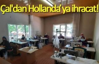Çal'dan Hollanda'ya ihracat!