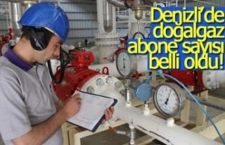 Denizli'de doğalgaz abone sayısı belli oldu!