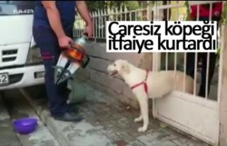 Çaresiz köpeği itfaiye kurtardı!