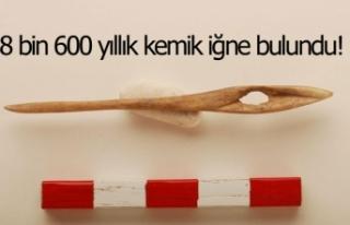 8 bin 600 yıllık kemik iğne bulundu!
