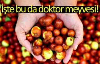 İşte bu da doktor meyvesi!