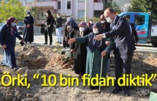 """Örki, """"10 bin fidan diktik"""""""