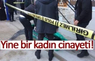 Yine bir kadın cinayeti!