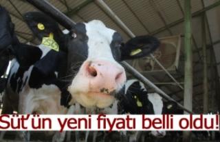 Süt'ün yeni fiyatı belli oldu!