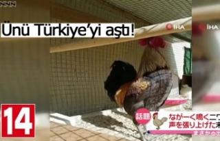 Ünü Türkiye'yi aştı!