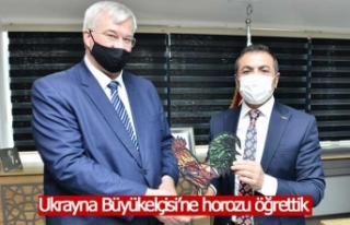 DTO Başkanı Erdoğan, Büyükelçi'ye Denizli...