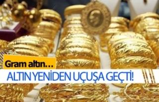 Altının durdurulamaz yükselişi devam ediyor