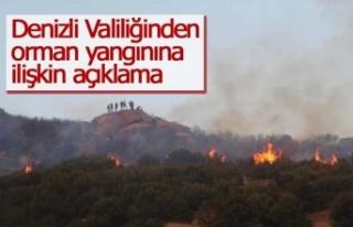 Denizli Valiliğinden orman yangınına ilişkin açıklama