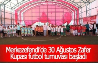 Merkezefendi'de 30 Ağustos Zafer Kupası futbol...