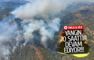 Muğla'daki yangına 12 helikopter müdahale...